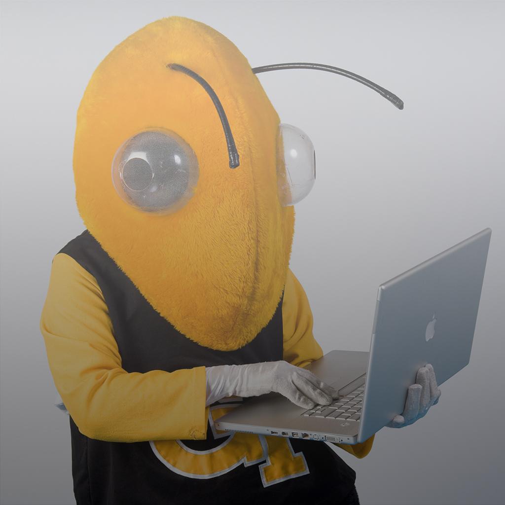 Buzz Applying